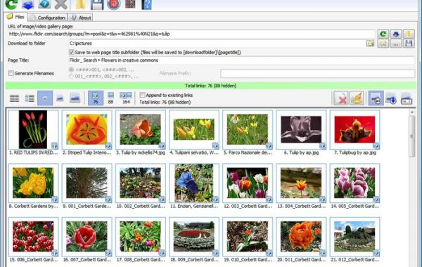 Bulk Image Downloader 6.00.0 Crack