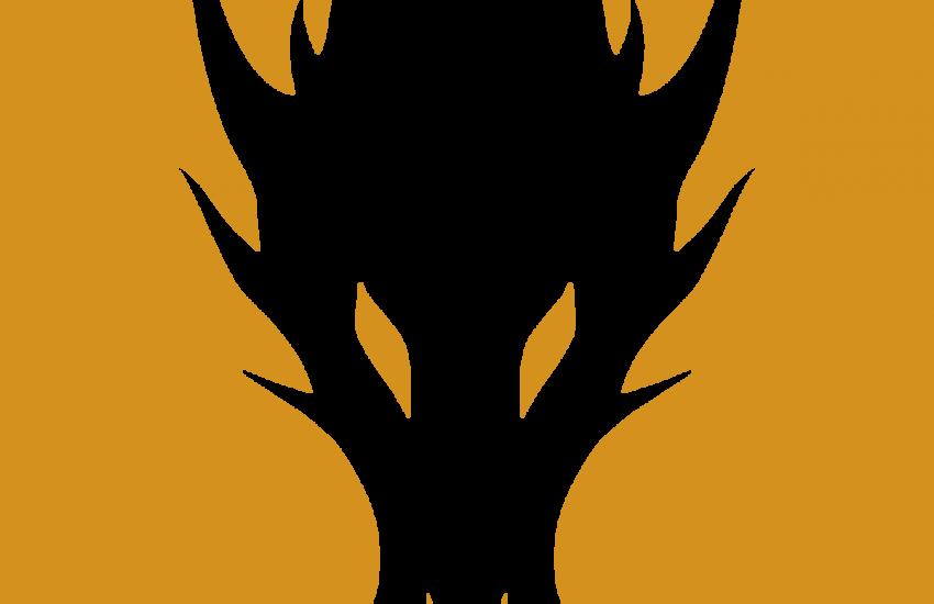Dragonframe 5.0 Crack